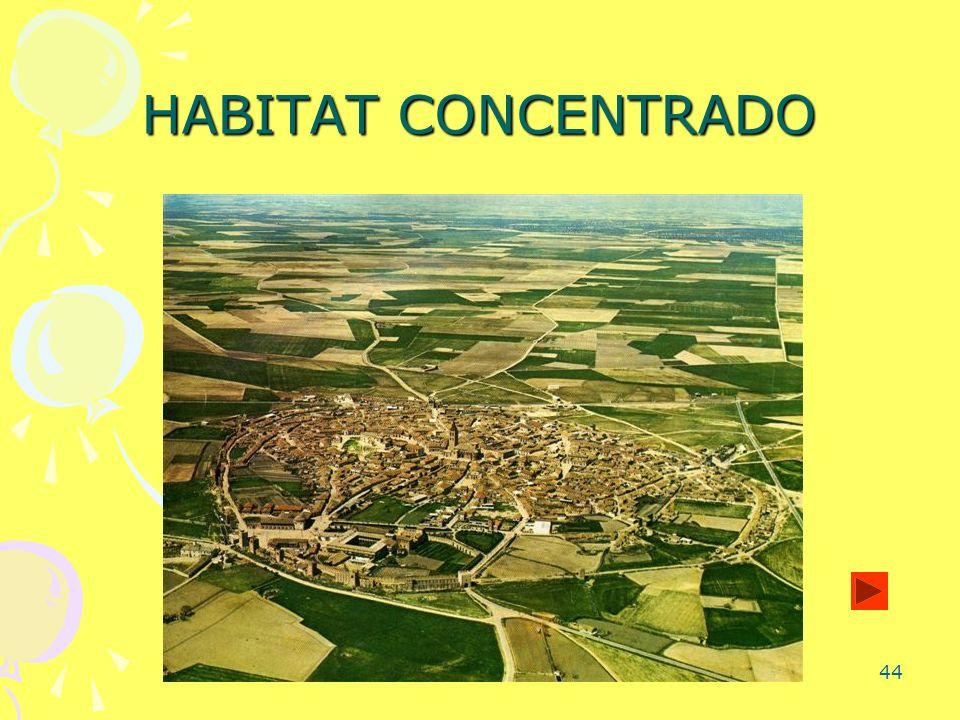 44 HABITAT CONCENTRADO