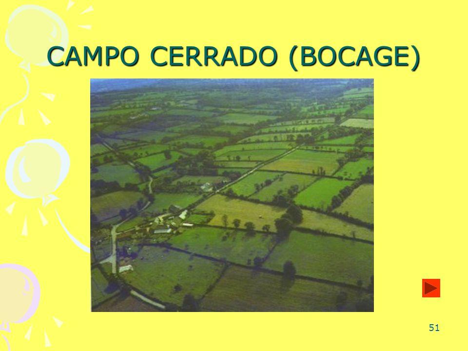 51 CAMPO CERRADO (BOCAGE)