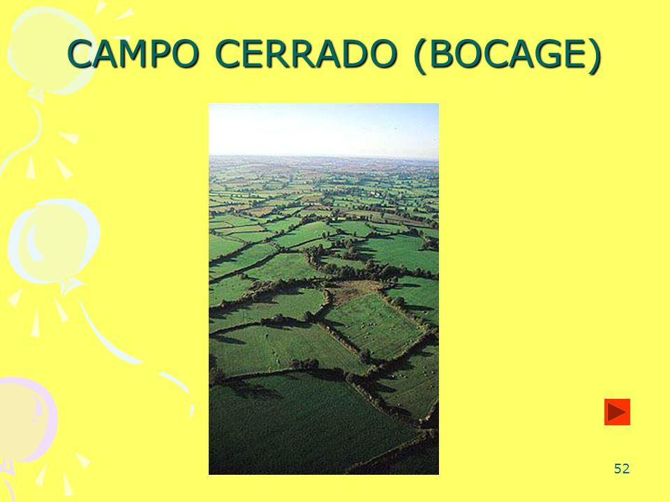 52 CAMPO CERRADO (BOCAGE)