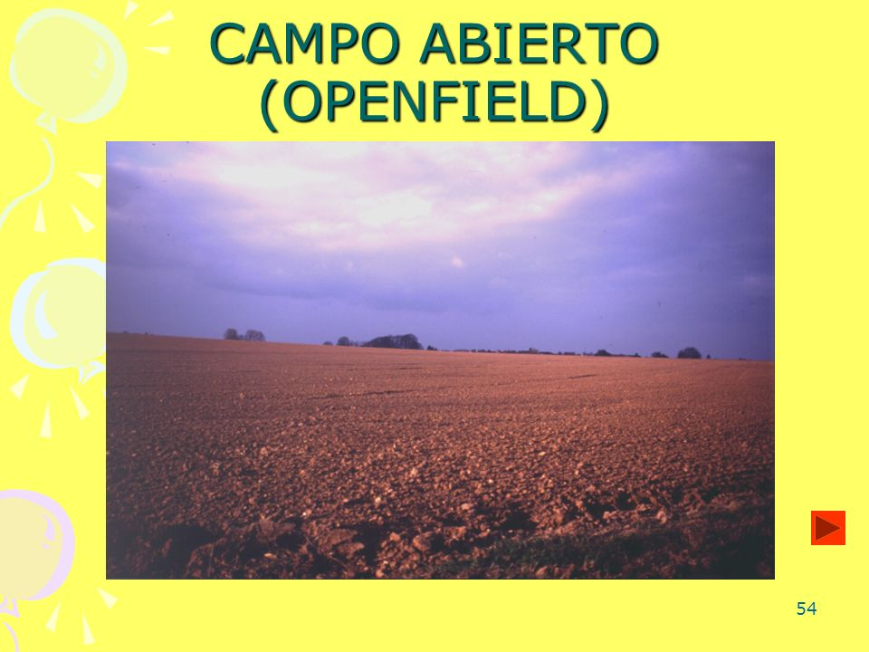 54 CAMPO ABIERTO (OPENFIELD)