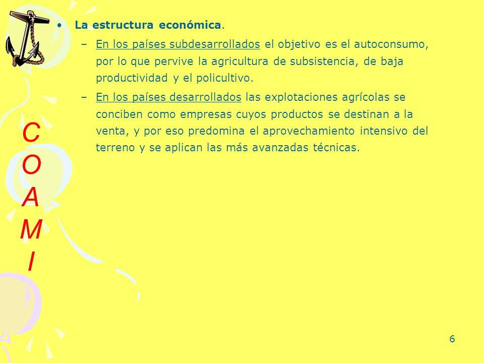 6 La estructura económica. –En los países subdesarrollados el objetivo es el autoconsumo, por lo que pervive la agricultura de subsistencia, de baja p