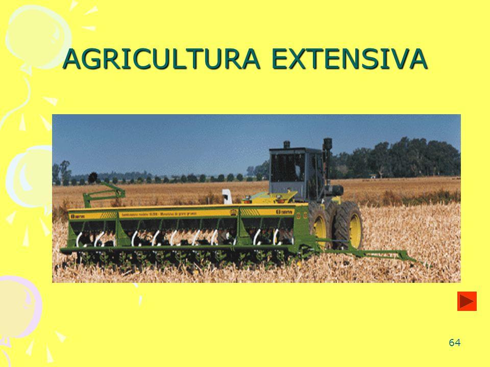 64 AGRICULTURA EXTENSIVA