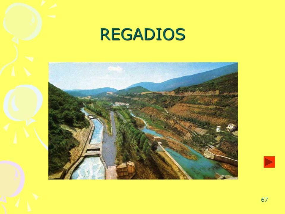 67 REGADIOS