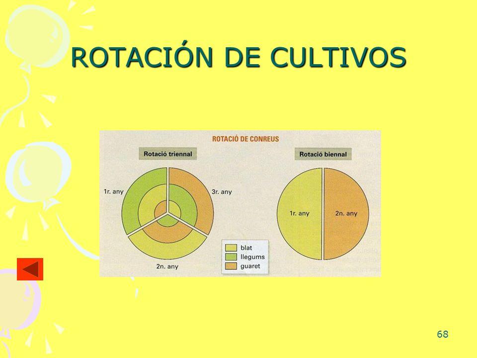68 ROTACIÓN DE CULTIVOS