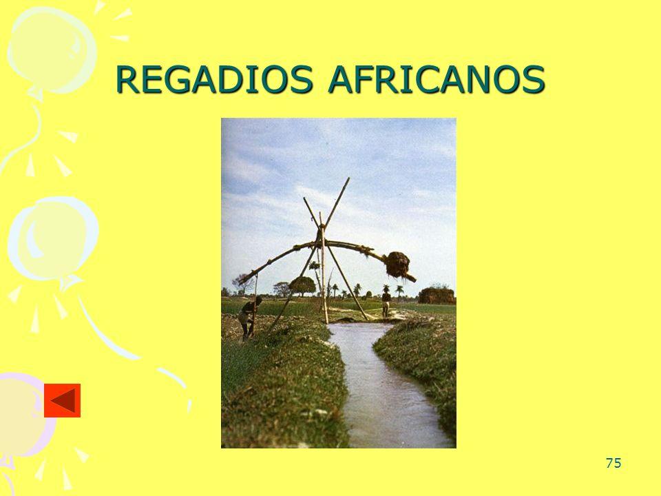 75 REGADIOS AFRICANOS