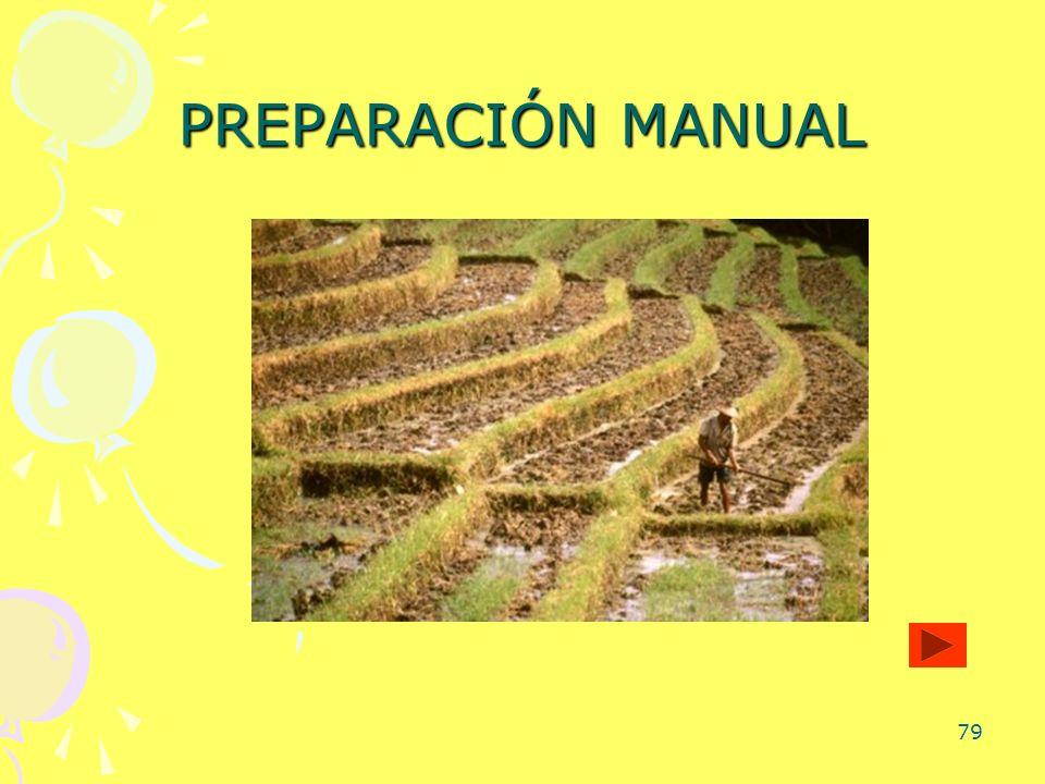 79 PREPARACIÓN MANUAL