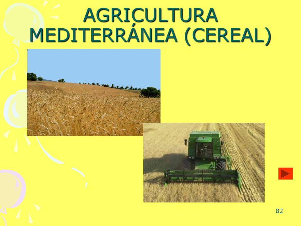82 AGRICULTURA MEDITERRÁNEA (CEREAL)