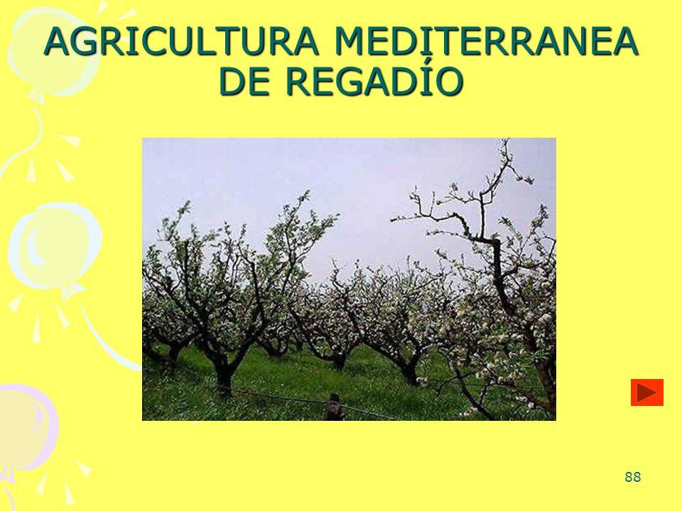 88 AGRICULTURA MEDITERRANEA DE REGADÍO