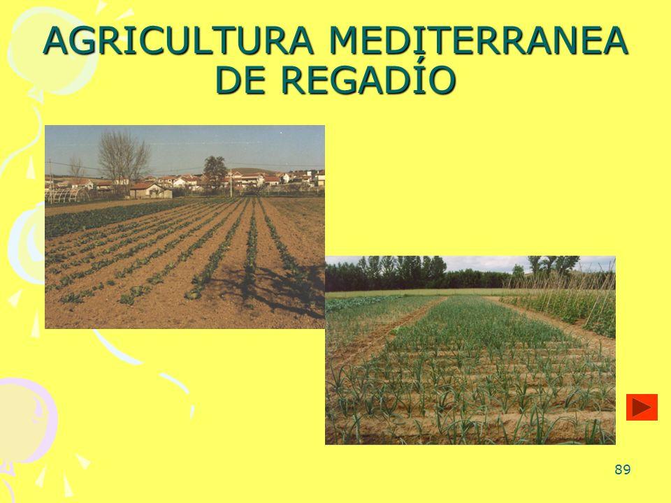 89 AGRICULTURA MEDITERRANEA DE REGADÍO