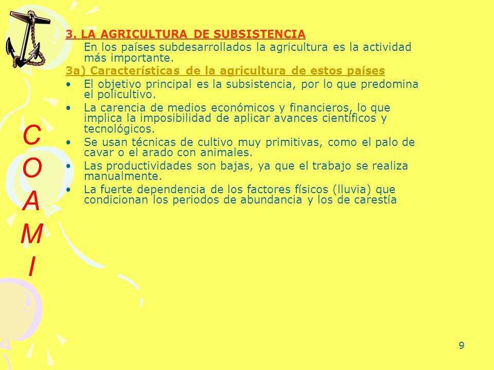 9 3. LA AGRICULTURA DE SUBSISTENCIA En los países subdesarrollados la agricultura es la actividad más importante. 3a) Características de la agricultur