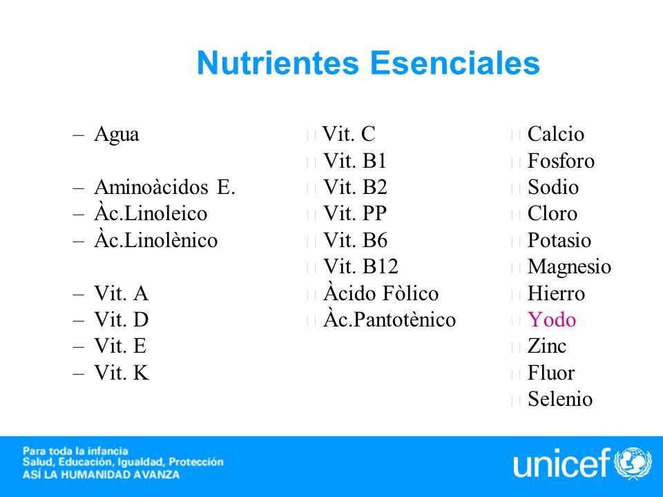 Nutrientes Esenciales –Agua Vit. C Calcio Vit. B1 Fosforo –Aminoàcidos E. Vit. B2 Sodio –Àc.Linoleico Vit. PP Cloro –Àc.Linolènico Vit. B6 Potasio Vit