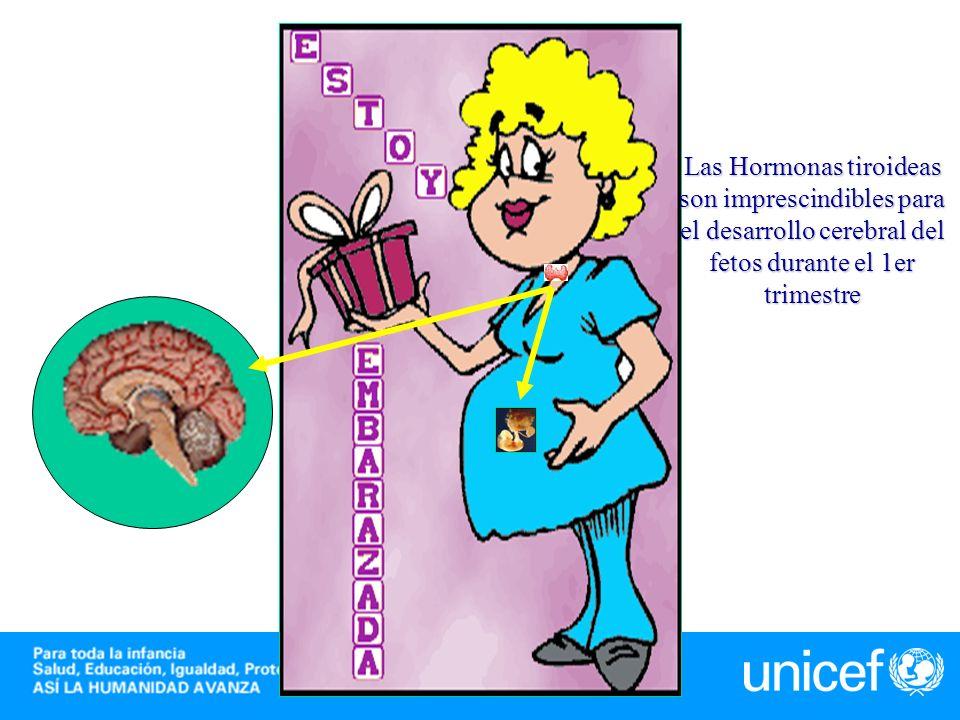 -N- T4 fetal T4 materna ·T4 fetal ·Maduración tiroides Def.