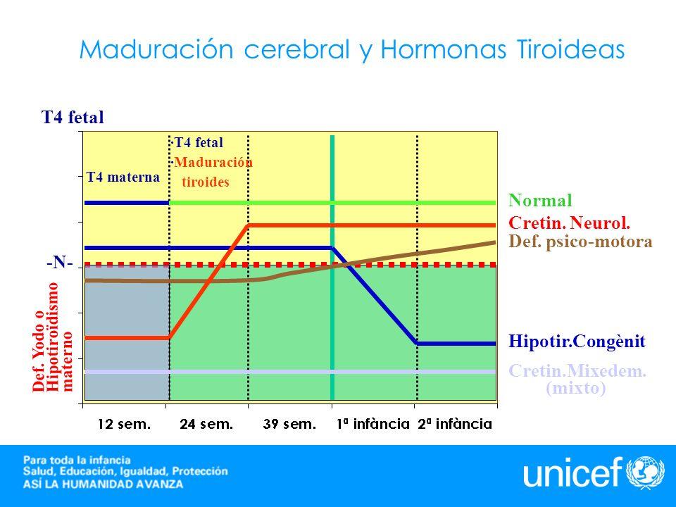 -N- T4 fetal T4 materna ·T4 fetal ·Maduración tiroides Def. Yodo o Hipotiroïdismo materno Normal Cretin. Neurol. Def. psico-motora Hipotir.Congènit Cr