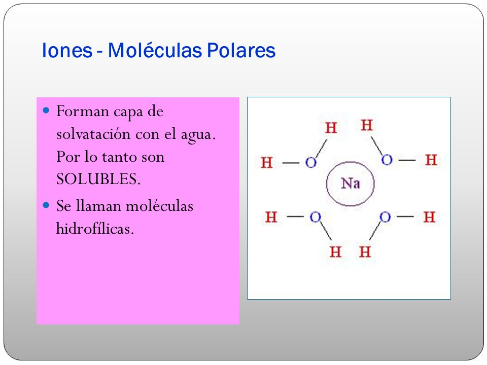 Iones - Moléculas Polares Forman capa de solvatación con el agua. Por lo tanto son SOLUBLES. Se llaman moléculas hidrofílicas.