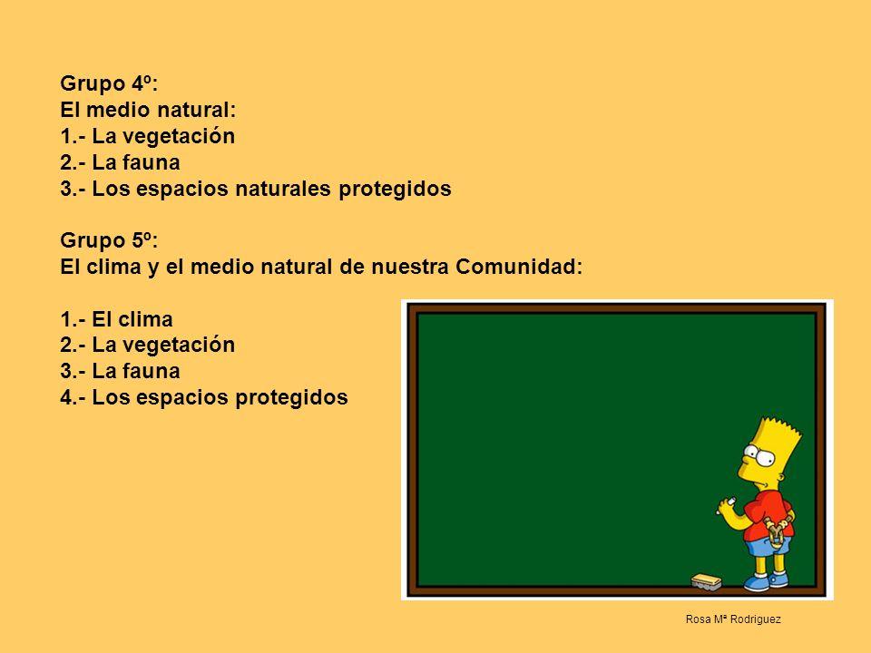 Grupo 1ª: Los ríos: 1.- Los ríos 2.- Los torrentes, los lagos y los embalses 3.- Las vertientes hidrográficas en España Grupo 2º: Los ríos de nuestra