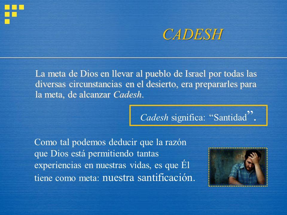 La meta de Dios en llevar al pueblo de Israel por todas las diversas circunstancias en el desierto, era prepararles para la meta, de alcanzar Cadesh.