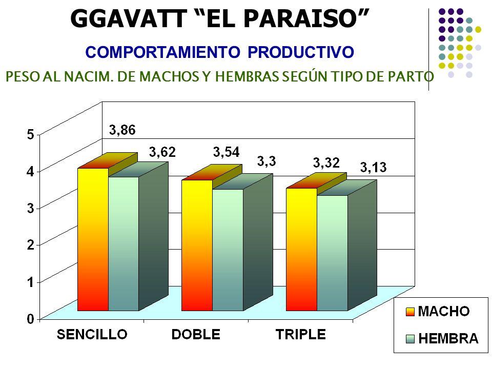 GGAVATT EL PARAISO COMPORTAMIENTO PRODUCTIVO PESO AL NACIM. DE MACHOS Y HEMBRAS SEGÚN TIPO DE PARTO