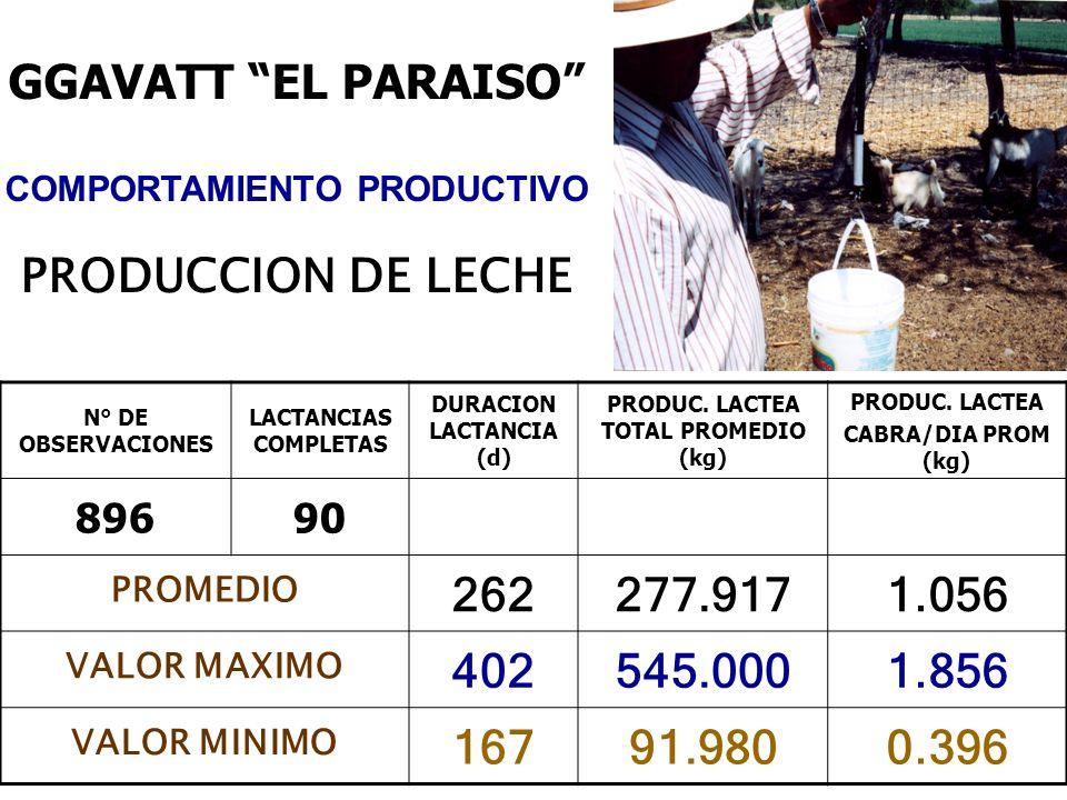 N° DE OBSERVACIONES LACTANCIAS COMPLETAS DURACION LACTANCIA (d) PRODUC. LACTEA TOTAL PROMEDIO (kg) PRODUC. LACTEA CABRA/DIA PROM (kg) 89690 PROMEDIO 2