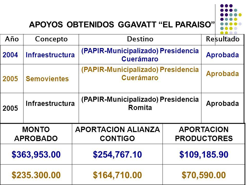 APOYOS OBTENIDOS GGAVATT EL PARAISO AñoConceptoDestinoResultado 2004Infraestructura (PAPIR-Municipalizado) Presidencia Cuerámaro Aprobada 2005Semovien