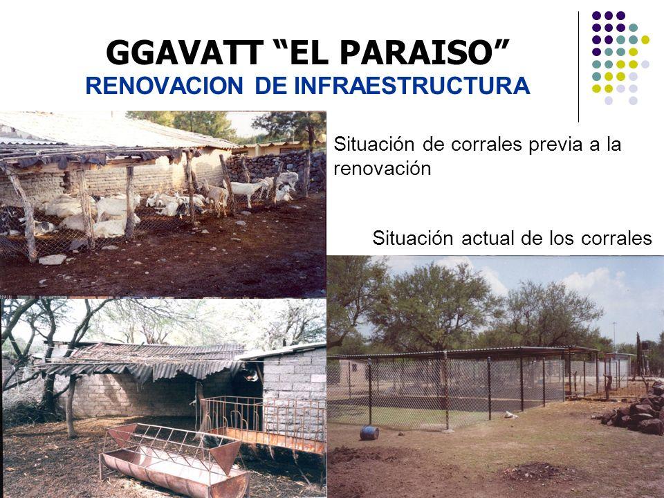 GGAVATT EL PARAISO RENOVACION DE INFRAESTRUCTURA Situación de corrales previa a la renovación Situación actual de los corrales