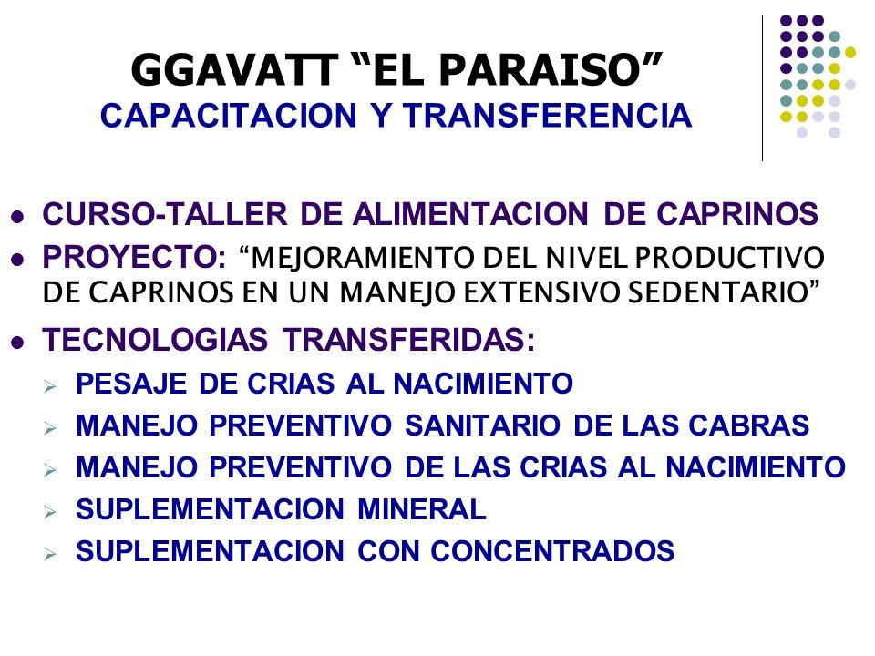 GGAVATT EL PARAISO CAPACITACION Y TRANSFERENCIA CURSO-TALLER DE ALIMENTACION DE CAPRINOS PROYECTO: MEJORAMIENTO DEL NIVEL PRODUCTIVO DE CAPRINOS EN UN