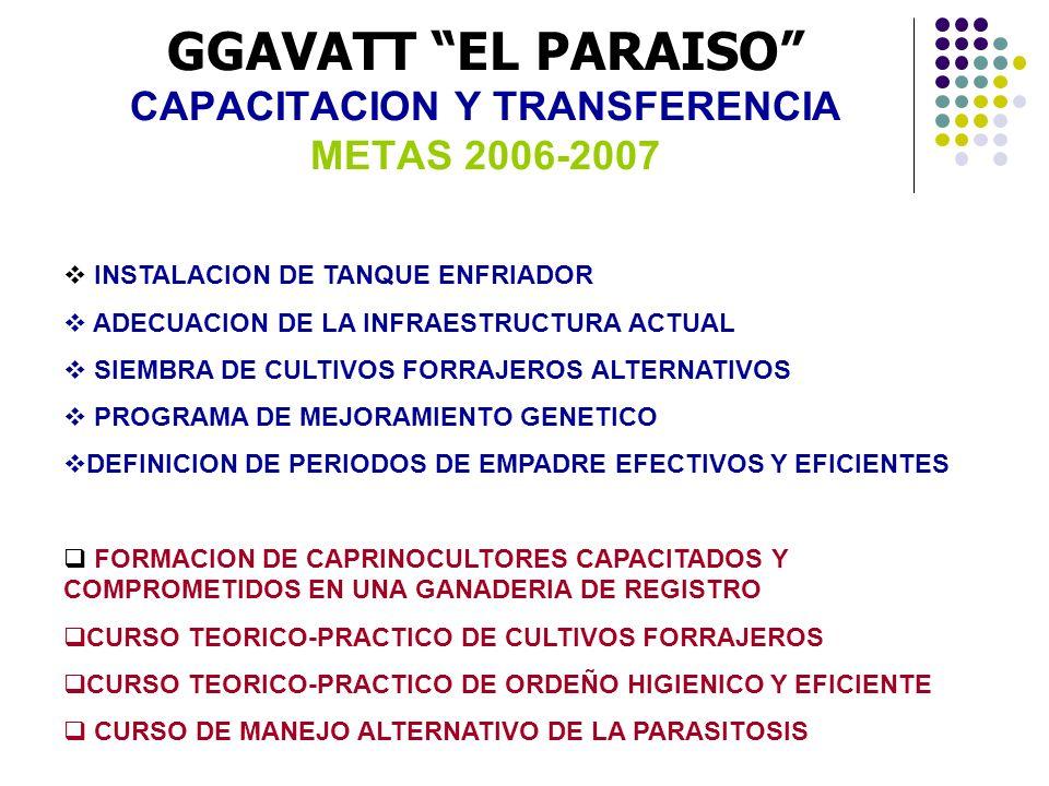 GGAVATT EL PARAISO CAPACITACION Y TRANSFERENCIA METAS 2006-2007 INSTALACION DE TANQUE ENFRIADOR ADECUACION DE LA INFRAESTRUCTURA ACTUAL SIEMBRA DE CUL