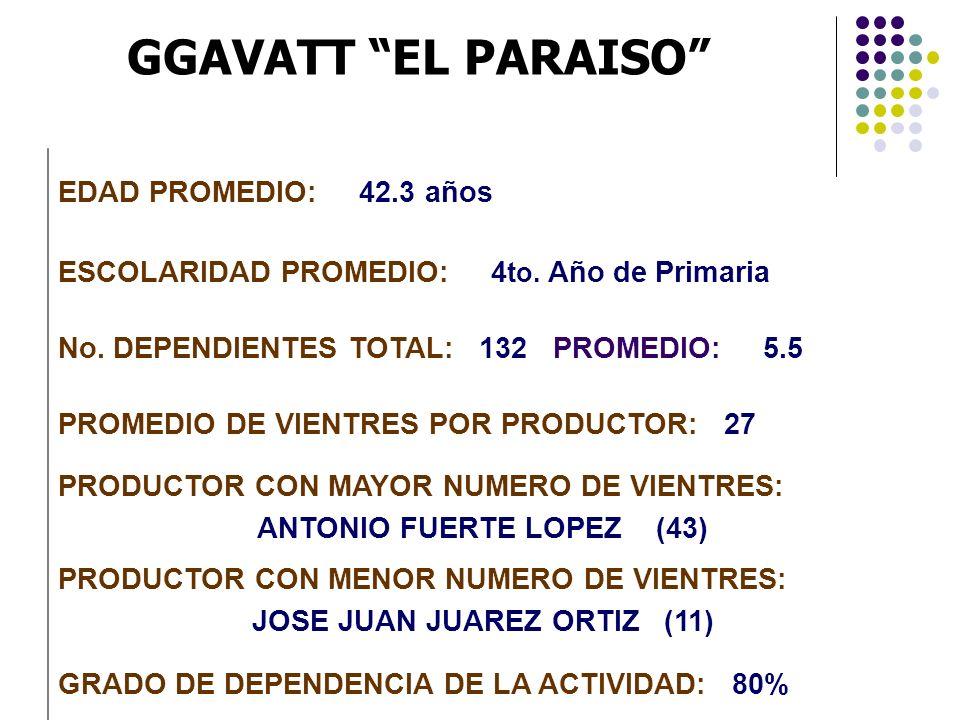 GGAVATT EL PARAISO EDAD PROMEDIO: 42.3 años ESCOLARIDAD PROMEDIO: 4 to. Año de Primaria No. DEPENDIENTES TOTAL: 132 PROMEDIO: 5.5 PROMEDIO DE VIENTRES