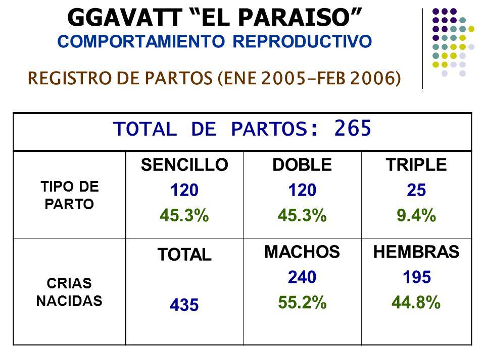 GGAVATT EL PARAISO COMPORTAMIENTO REPRODUCTIVO REGISTRO DE PARTOS (ENE 2005-FEB 2006) TOTAL DE PARTOS: 265 TIPO DE PARTO SENCILLO 120 45.3% DOBLE 120