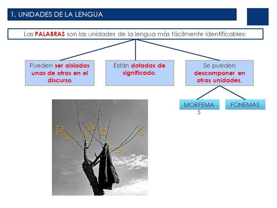 1. UNIDADES DE LA LENGUA Las PALABRAS son las unidades de la lengua más fácilmente identificables: Pueden ser aisladas unas de otras en el discurso Es