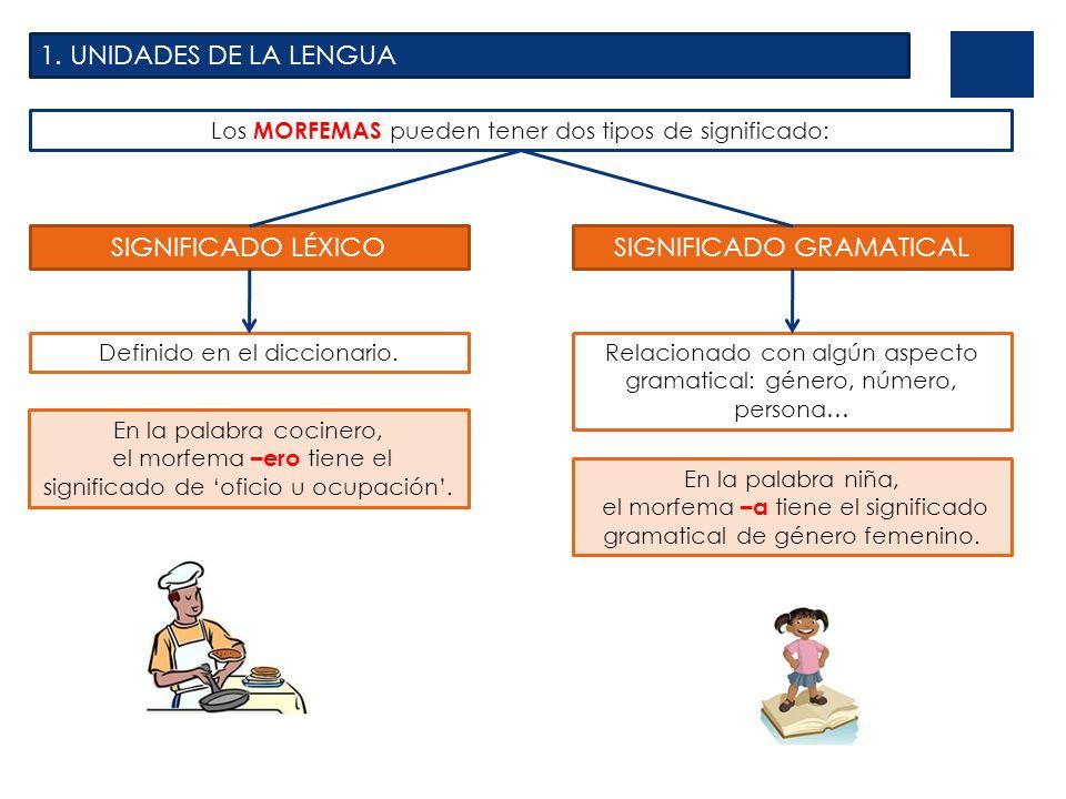 1. UNIDADES DE LA LENGUA Los MORFEMAS pueden tener dos tipos de significado: SIGNIFICADO LÉXICO Definido en el diccionario. SIGNIFICADO GRAMATICAL Rel