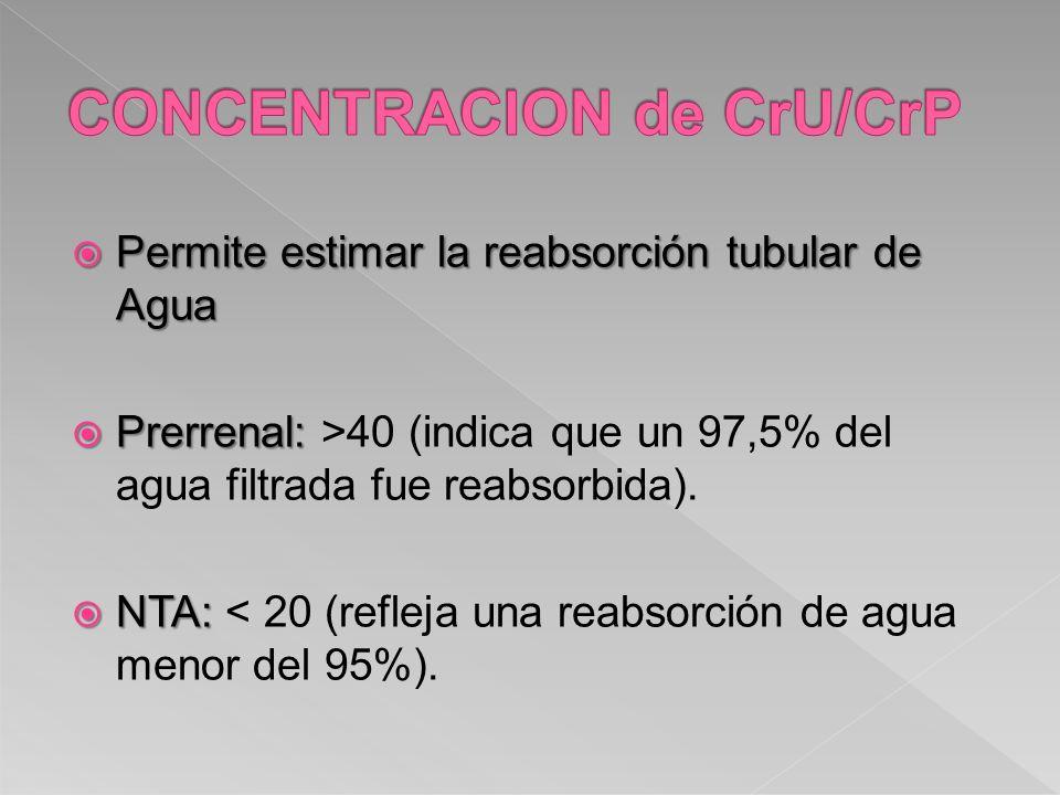 Permite estimar la reabsorción tubular de Agua Permite estimar la reabsorción tubular de Agua Prerrenal: Prerrenal: >40 (indica que un 97,5% del agua