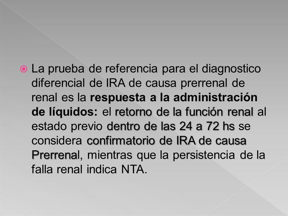 retorno de la función renal dentro de las 24 a 72 hs confirmatorio de IRA de causa Prerrena La prueba de referencia para el diagnostico diferencial de