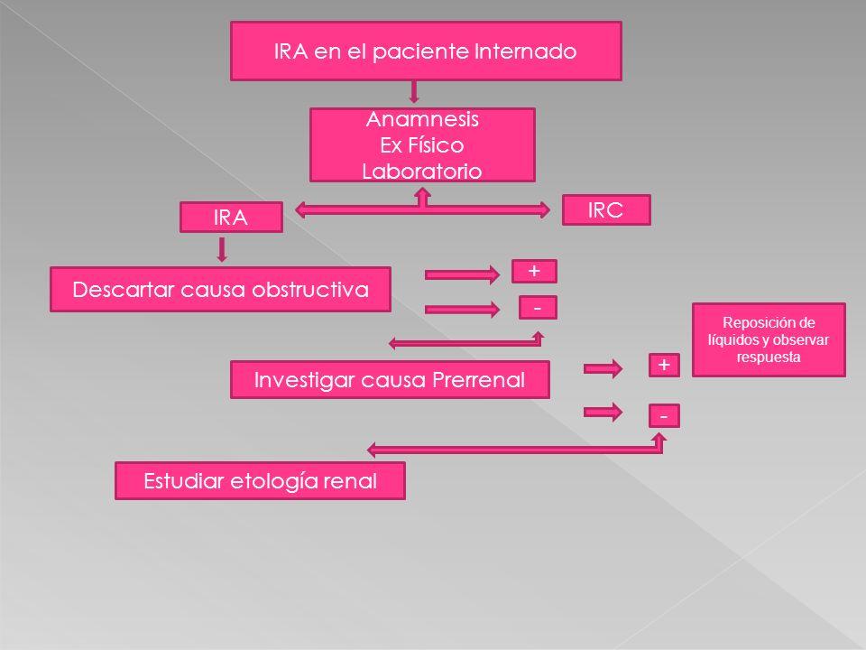 IRA en el paciente Internado Anamnesis Ex Físico Laboratorio IRA IRC Descartar causa obstructiva + - Investigar causa Prerrenal + - Reposición de líqu