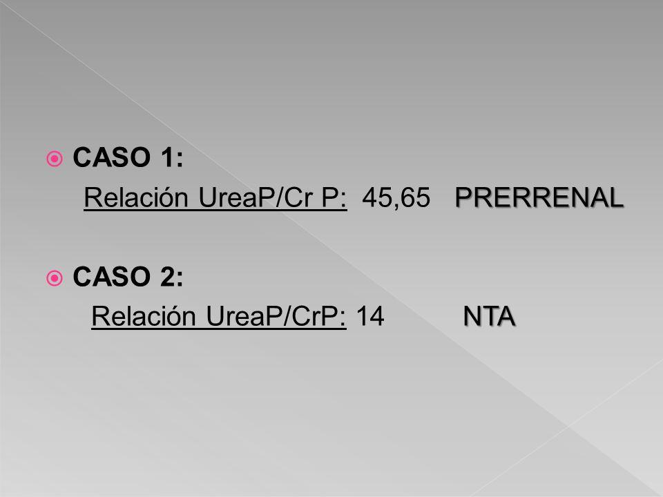 CASO 1: PRERRENAL Relación UreaP/Cr P: 45,65 PRERRENAL CASO 2: NTA Relación UreaP/CrP: 14 NTA
