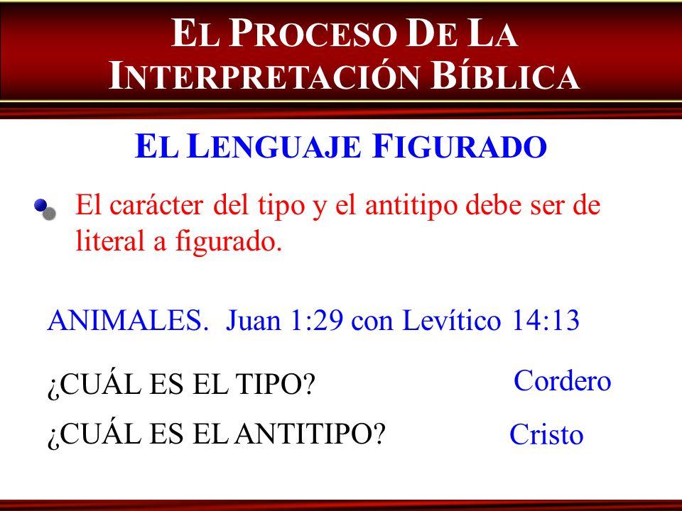 ANIMALES. Juan 1:29 con Levítico 14:13 ¿CUÁL ES EL TIPO? ¿CUÁL ES EL ANTITIPO? El carácter del tipo y el antitipo debe ser de literal a figurado. E L