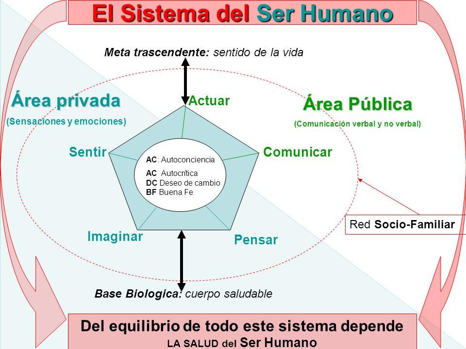 El Sistema del Ser Humano Meta trascendente: sentido de la vida Base Biologica: cuerpo saludable Actuar SentirComunicar Pensar Imaginar AC: Autoconcie