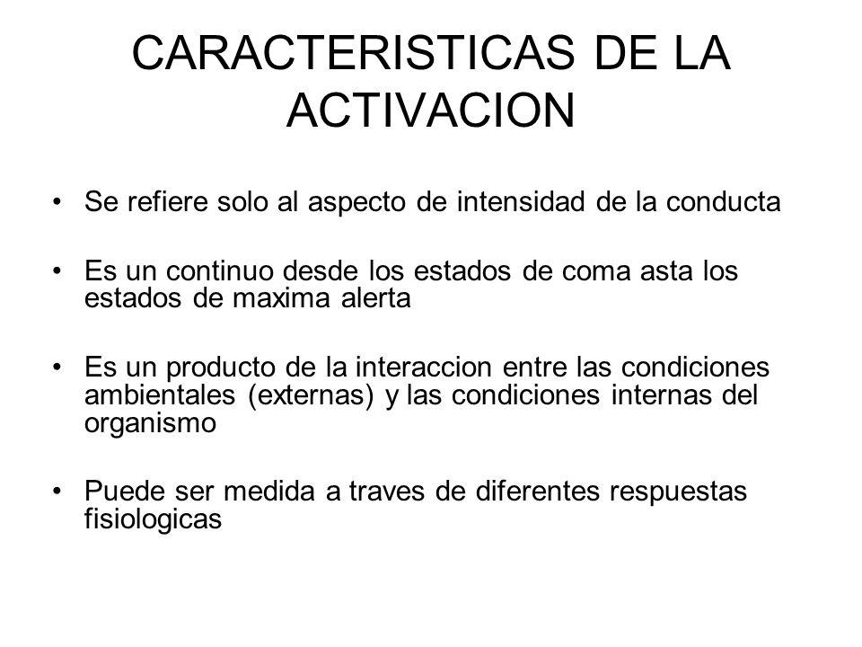 CARACTERISTICAS DE LA ACTIVACION Se refiere solo al aspecto de intensidad de la conducta Es un continuo desde los estados de coma asta los estados de