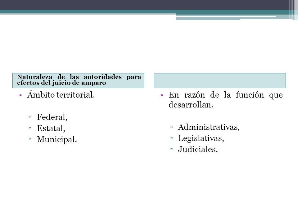 Naturaleza de las autoridades para efectos del juicio de amparo Ámbito territorial. Federal, Estatal, Municipal. En razón de la función que desarrolla