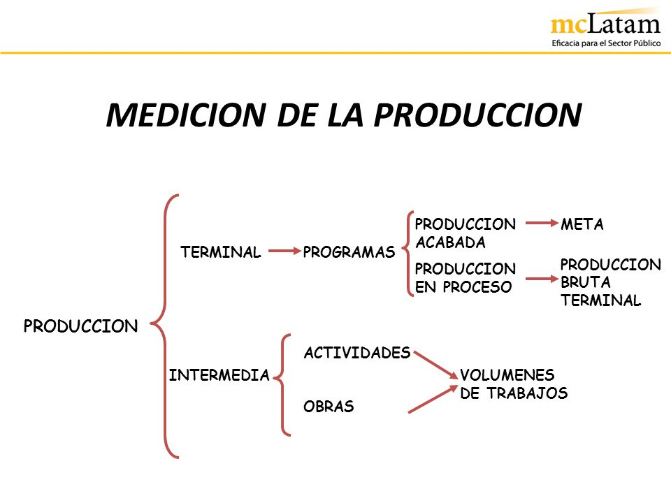 MEDICION DE LA PRODUCCION TERMINAL INTERMEDIA PROGRAMAS PRODUCCION ACTIVIDADES OBRAS PRODUCCION ACABADA PRODUCCION EN PROCESO META PRODUCCION BRUTA TE