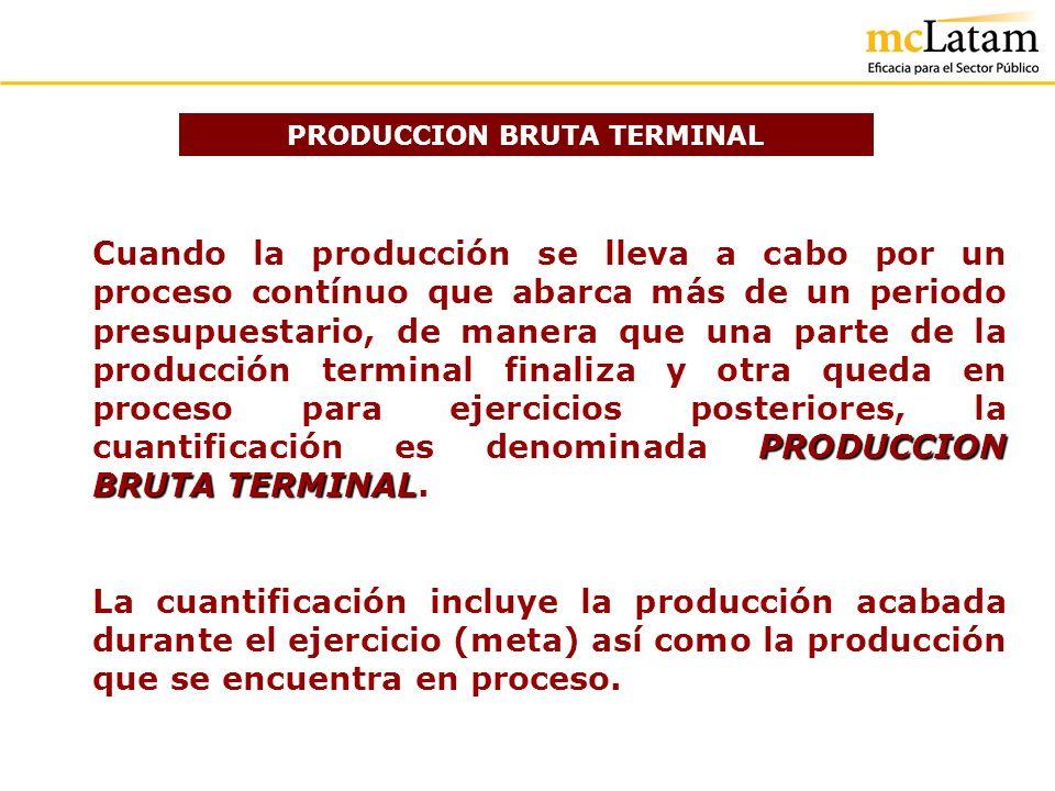 PRODUCCION BRUTA TERMINAL PRODUCCION BRUTA TERMINAL Cuando la producción se lleva a cabo por un proceso contínuo que abarca más de un periodo presupue