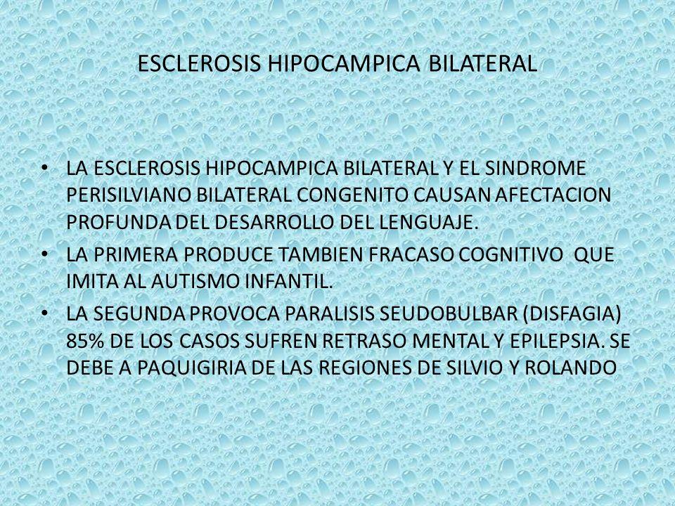 ESCLEROSIS HIPOCAMPICA BILATERAL LA ESCLEROSIS HIPOCAMPICA BILATERAL Y EL SINDROME PERISILVIANO BILATERAL CONGENITO CAUSAN AFECTACION PROFUNDA DEL DES