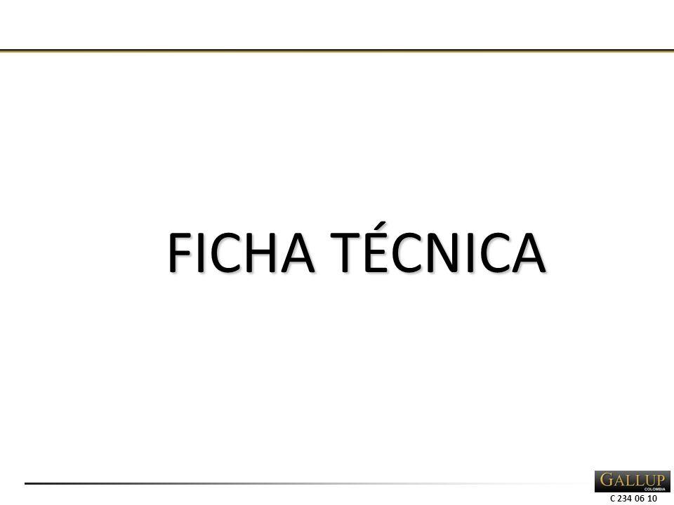 C 234 06 10 FICHA TÉCNICA