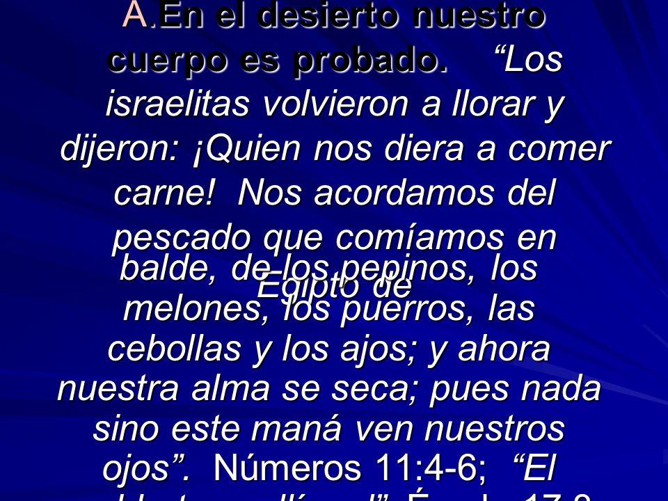 A.En el desierto nuestro cuerpo es probado. Los israelitas volvieron a llorar y dijeron: ¡Quien nos diera a comer carne! Nos acordamos del pescado que