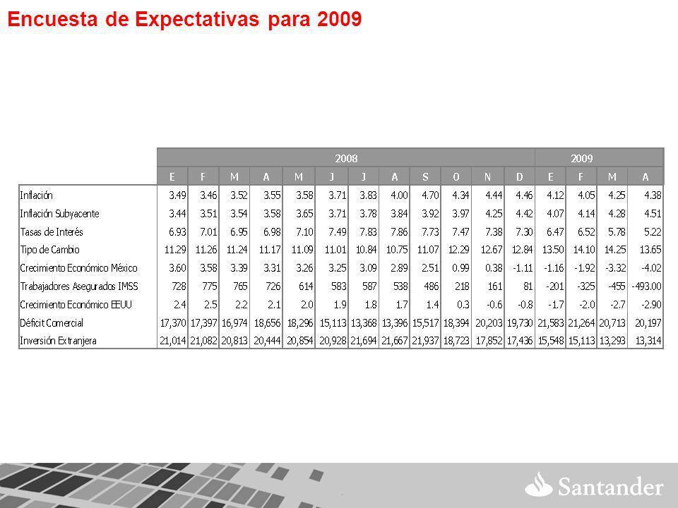Encuesta de Expectativas para 2009