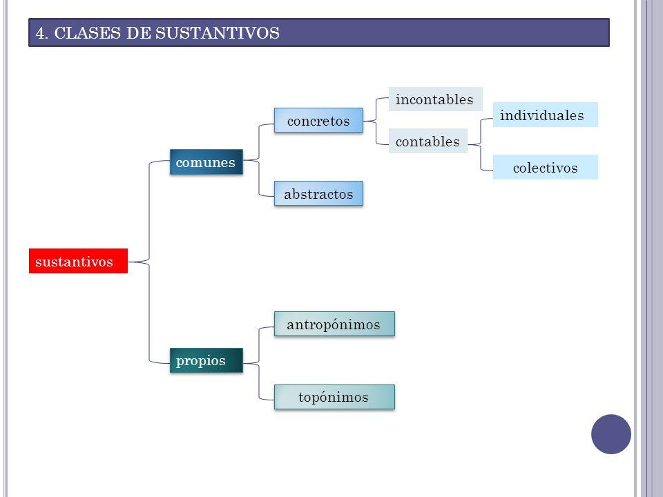 4. CLASES DE SUSTANTIVOS sustantivos comunes concretos incontables contables individuales colectivos abstractos propios antropónimos topónimos