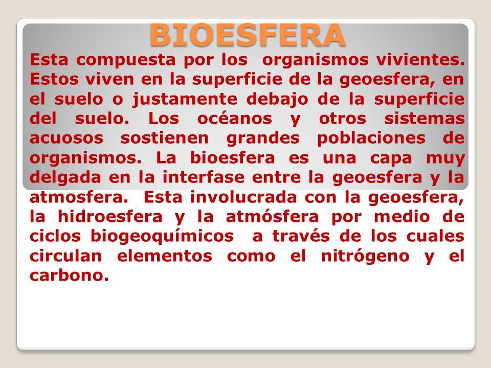 BIOESFERA Esta compuesta por los organismos vivientes. Estos viven en la superficie de la geoesfera, en el suelo o justamente debajo de la superficie