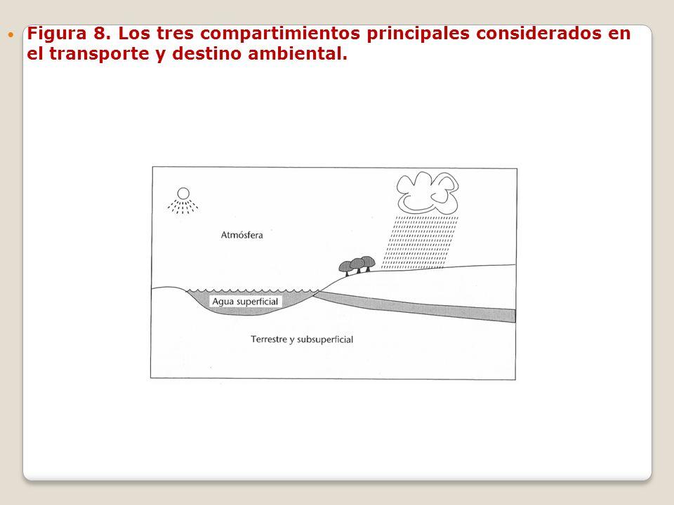 Figura 8. Los tres compartimientos principales considerados en el transporte y destino ambiental.