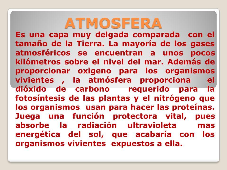 ATMOSFERA Es una capa muy delgada comparada con el tamaño de la Tierra. La mayoría de los gases atmosféricos se encuentran a unos pocos kilómetros sob