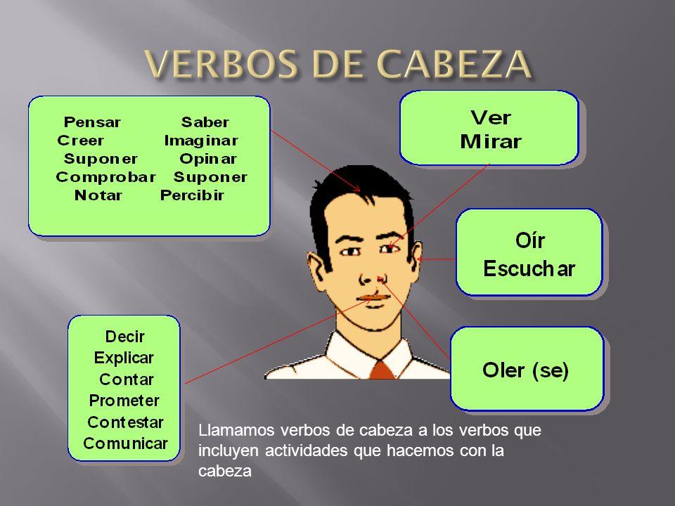 Llamamos verbos de cabeza a los verbos que incluyen actividades que hacemos con la cabeza