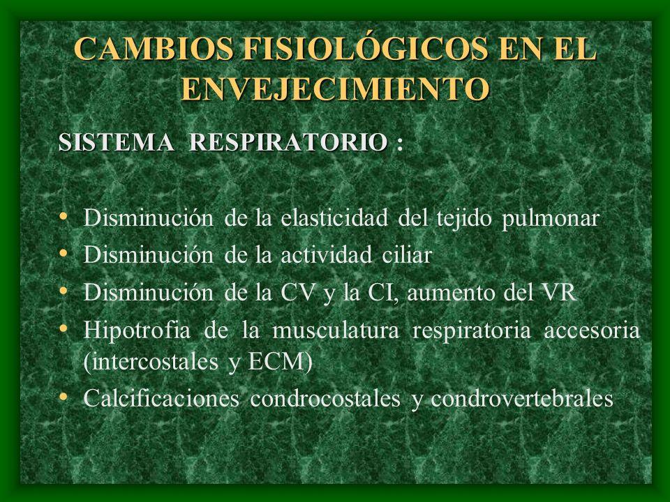 CAMBIOS FISIOLÓGICOS EN EL ENVEJECIMIENTO SISTEMA RESPIRATORIO SISTEMA RESPIRATORIO : Disminución de la elasticidad del tejido pulmonar Disminución de